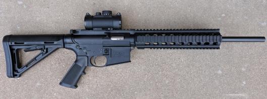 S&W .22LR AR-15 Clone