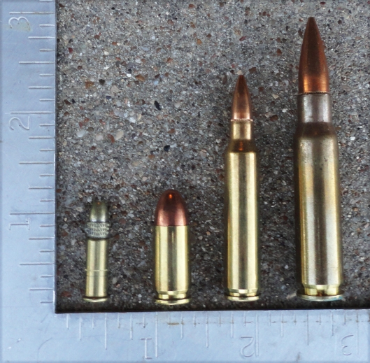 L to R: .22LR, 9mm, .223, .308