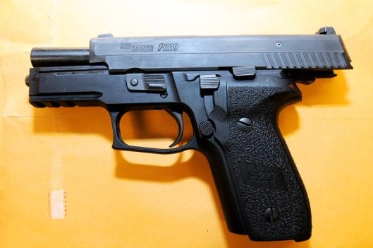 Darren Wilson's Sig P229