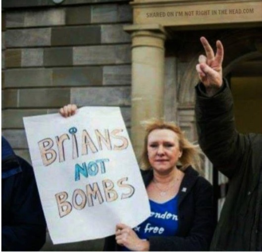 brins-not-bombs